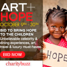 ART + HOPE Online Charity Auction 2013